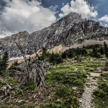 """""""The mountains are calling and I must go.""""- John Muir"""