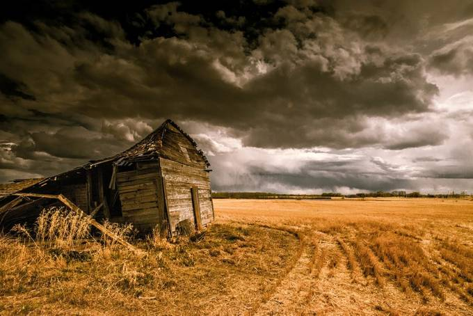 DSC_1399-4N of Blackstrap by KrisjanJude - A Storm Is Coming Photo Contest