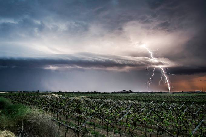 Electric landscape by anenaburger - Farming Photo Contest