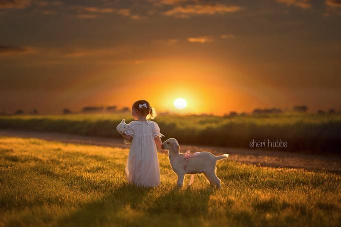 Wonder. by shubbsphotography - Children and Animals Photo Contest
