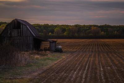 farm field-1