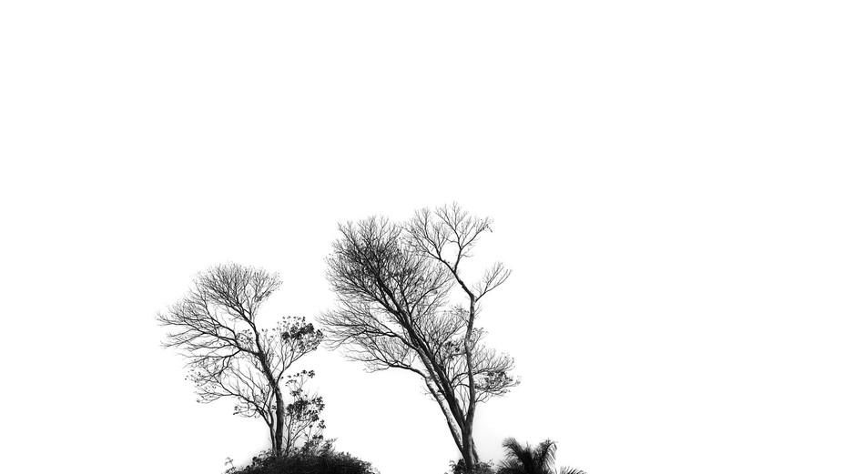 20150322_140420(4)(2)_2_1-01