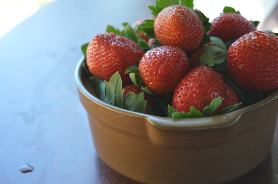 Strawberries i hand picked