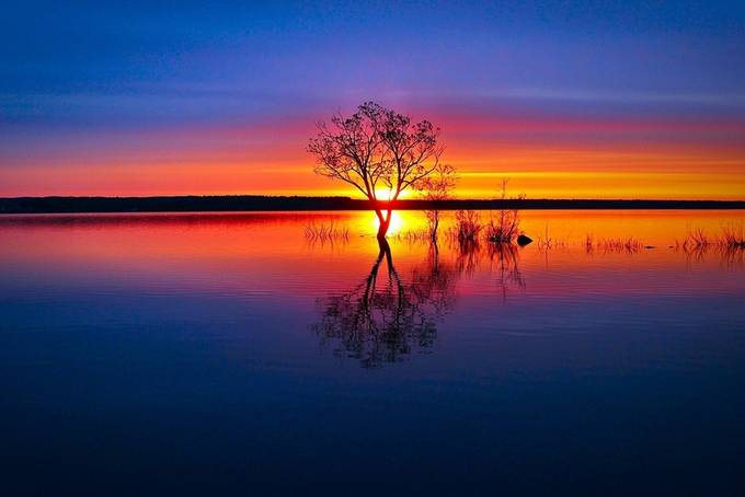 Speechless  by CanadianOutlaw - Light On Water Photo Contest