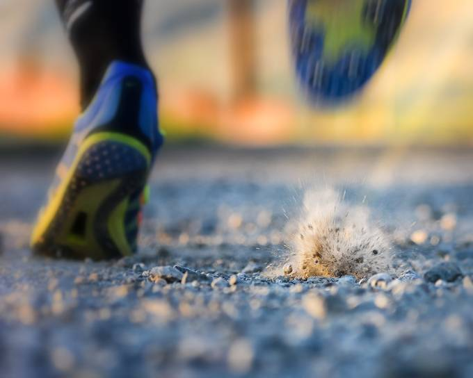Kicking Dirt by LiveInspiredByBrenda - Running Photo Contest