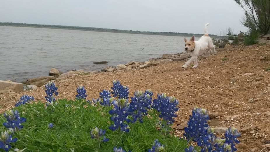 A Texas State Park