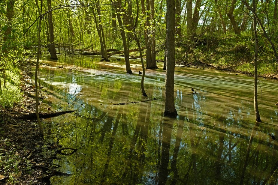 The C&O Canal, just below Riley\'s Lock. I was completing a bike ride with a MeetUp group and ...