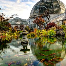 Conservatory on Belle Isle, Detroit 2014