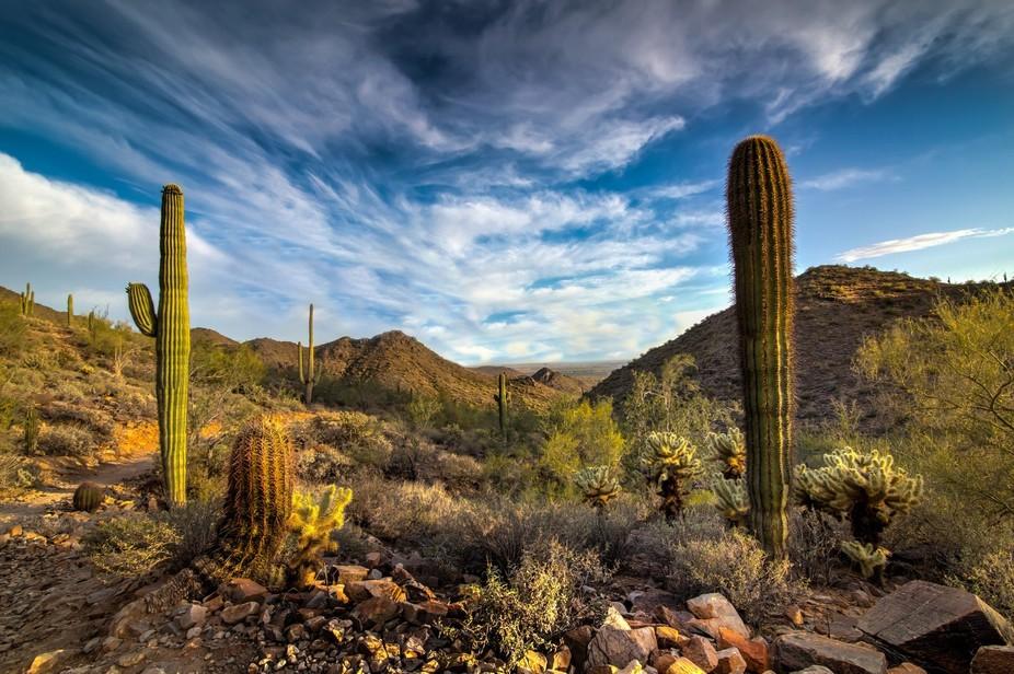 Sonora Preserve, Scottsdale