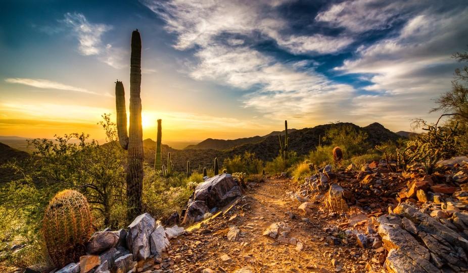 Sonoran Preserve located in Scottsdale, AZ