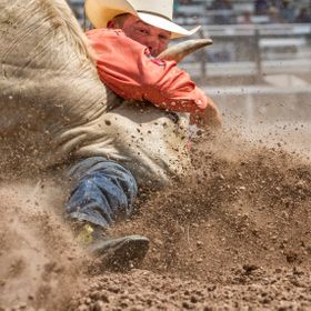 You have to be a little crazy to do this. Steer Wrestling is for the