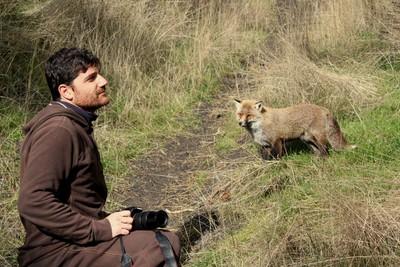Photograher & Fox