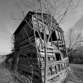 This is an old farmhouse near the Blue Ridge Mountains in Virginia. I had to jump an electrified barbwire fence covered in thorn bushes to get th...