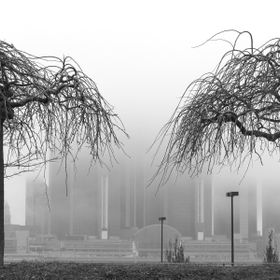 Two early spring trees in Windsor, ON, with the shrouded Rennaissance Centre (GM), Detroit, Michigan, in the background.