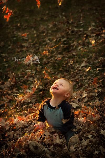 Leaf Joy