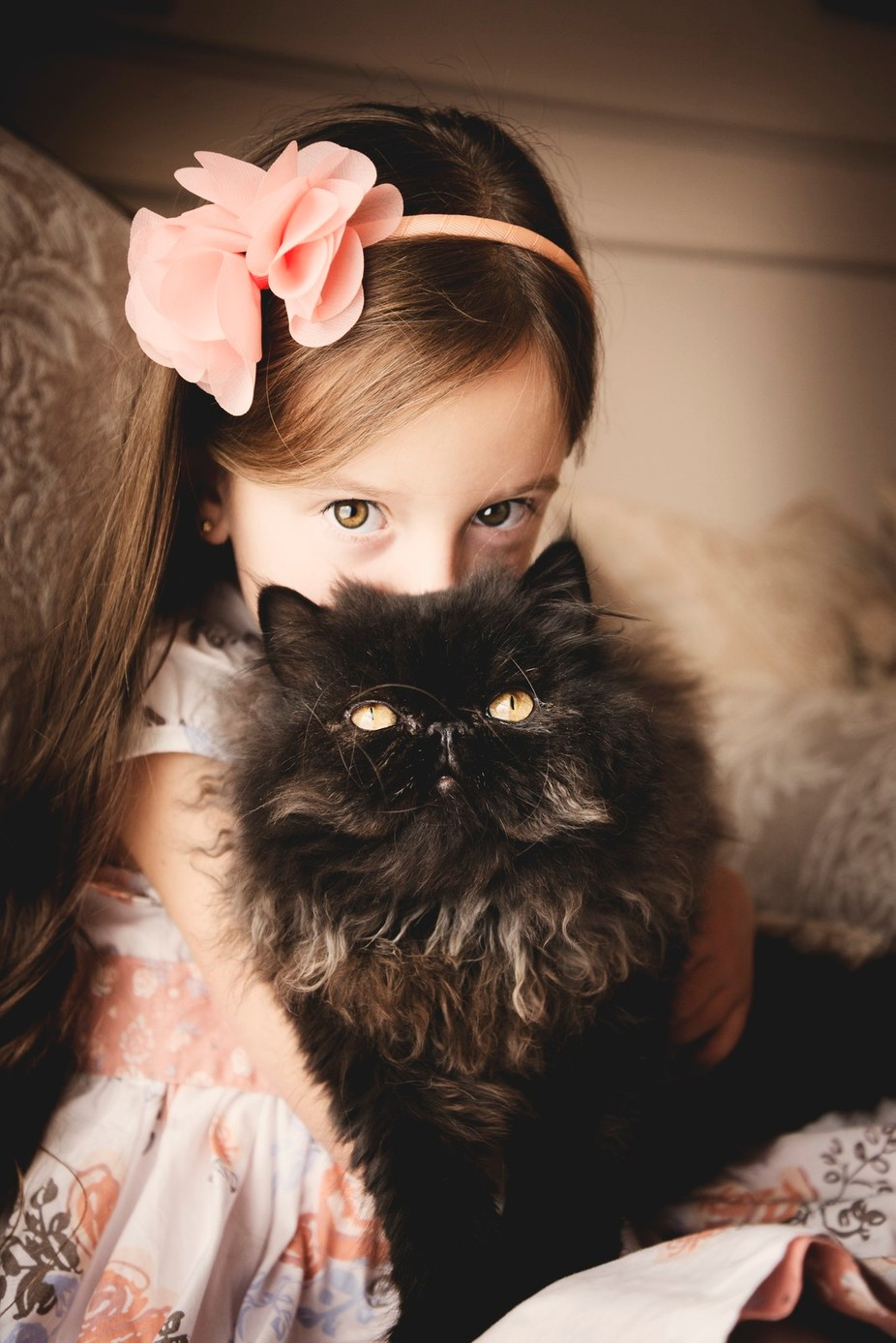 The eyes of Aslan by LisaHodsonPhotography - Kids And Pets Photo Contest
