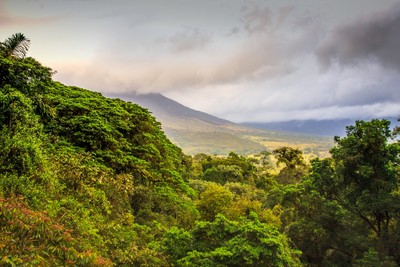 Stebel-Slopes of Mount Arenal Volcano, Costa Rica