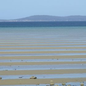 Mudflats near narrow neck on the way to Port Arthur in Tassie.