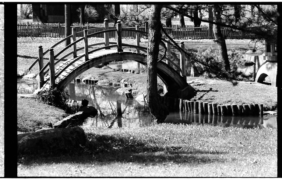 Small picturesque park in Illinois. I forgot to crop out the negative framing. Nikon F2000, in-le...
