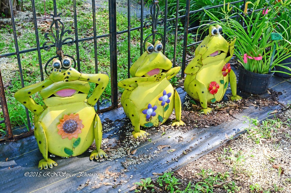 These are three whimsical frogs depicting See No Evil, Speak No Evil and Hear No Evil at the Cren...