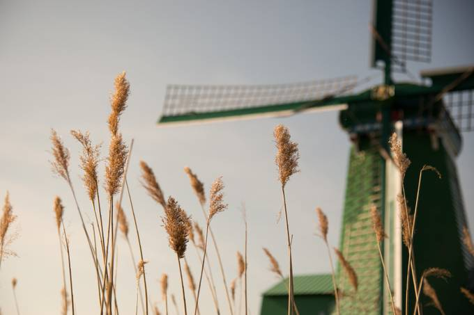 Touch of Breeze by bteek - 200 Windmills Photo Contest