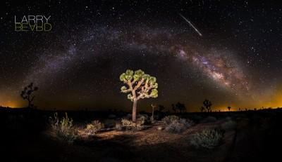Lyrid Meteor Falling (Over Joshua Tree)
