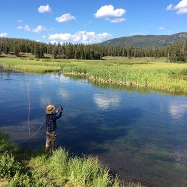 Preston flyfishing