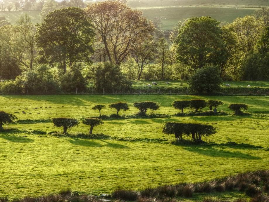 A sunny morning in Cynwyd, North Wales.