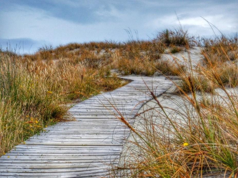 Beach Path ...