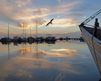 Shrimp boat harbor sunup