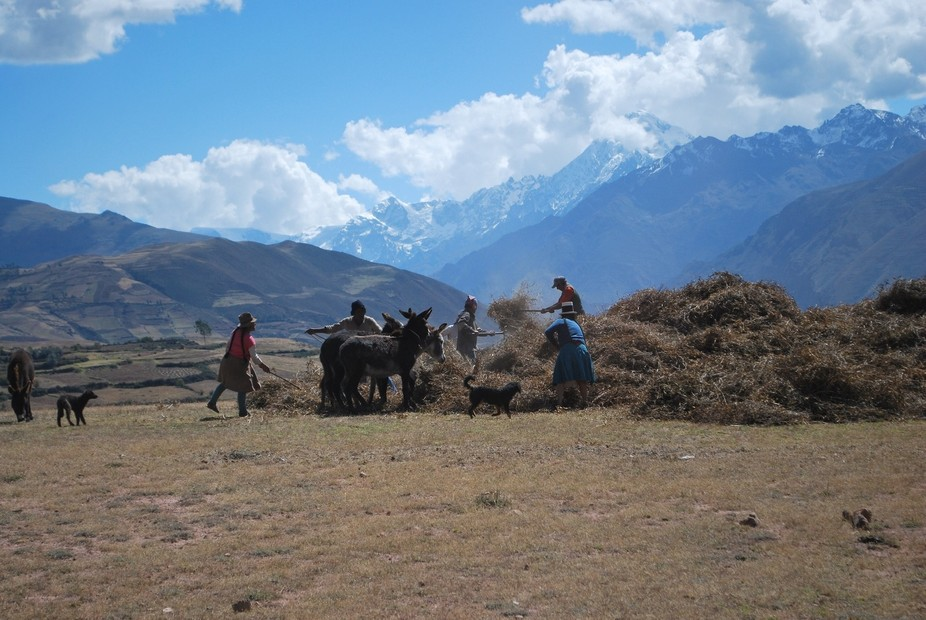 While traveling to our lunch destination, after touring salt mines, in Peru, we came upon a group...
