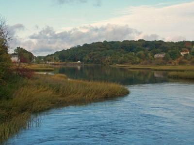 Marsh river