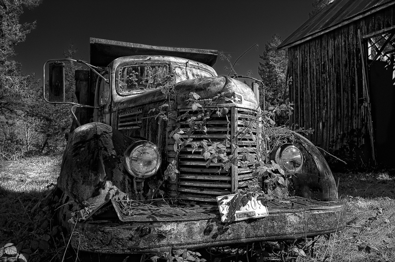 My wife and I spotted this old International Harvester truck abandoned in a field while traveling through the mountains in Oregon. The blackberry vines were growing over and also inside the cab of this old truck. The old barn next to it was also rotting and falling apart.  It reminded me that eventually nature reclaims everything. It was converted to BW using NIK Silver Effects Pro 2.