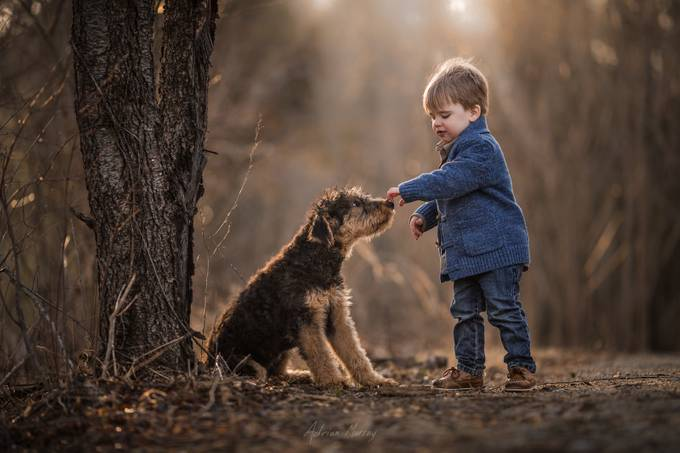 IMG_4064 by adrianmurray - Happy Moments Photo Contest