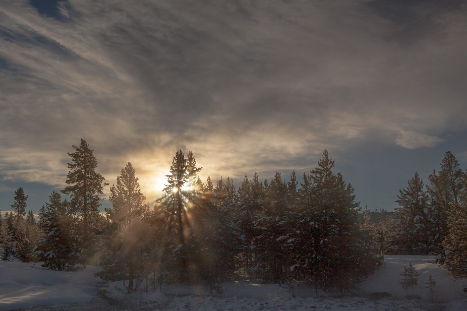 This is part of my winter morning walk.  The sun peeks through the trees, the steam from the mars...