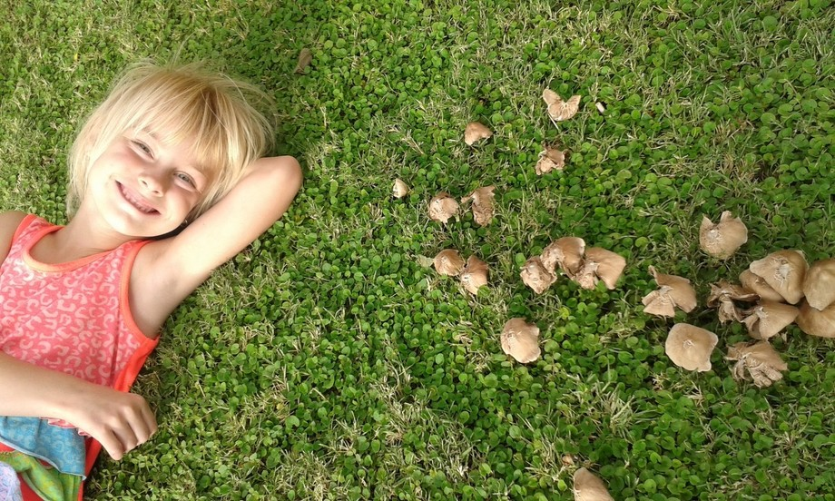 My little girl believes that fairies lives in mushrooms.