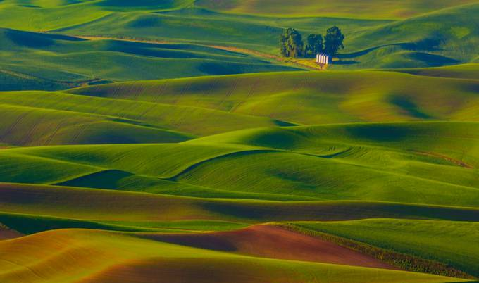 Palouse Colors by svetlana56 - Lost In The Field Photo Contest