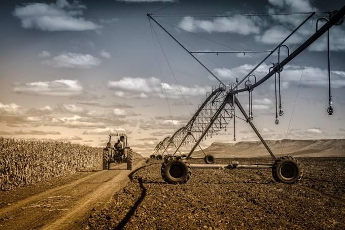 IMG_1808-Edit-6 by arlomarkantonatos - Dry Fields Photo Contest