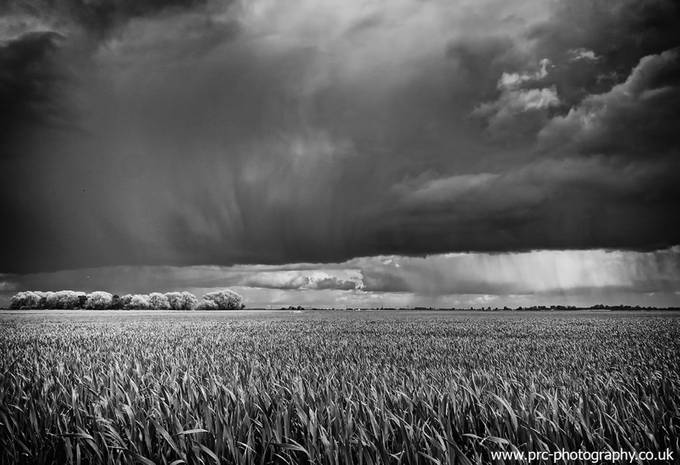 Good light starts play by PRC_PHOTO - A Storm Is Coming Photo Contest