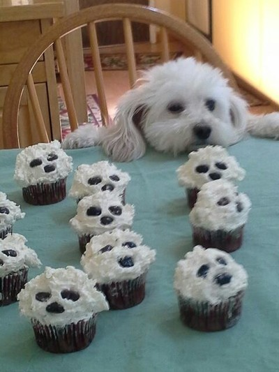 Are These For Me?
