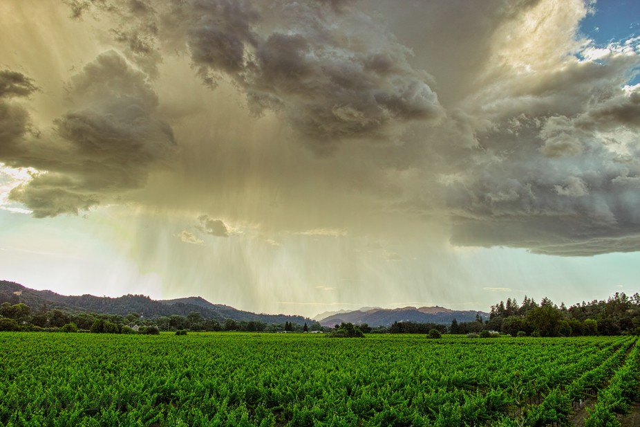 A rare thunderstorm in Dry Creek Valley, California.