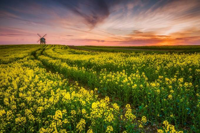 Sunset over Chesterton Windmill by Vemsteroo - Windmills Photo Contest