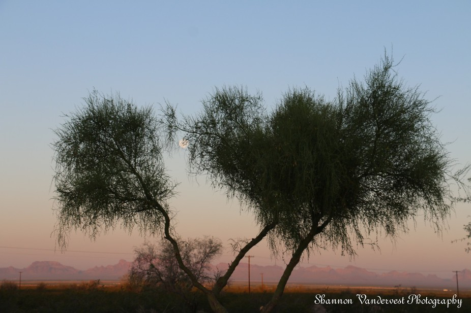After a long trip of moving from California to Arizona I stopped over at a truck stop to sleep. W...