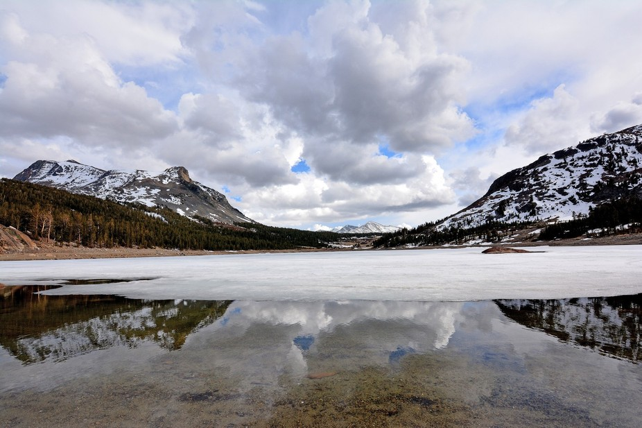On May 4, 2015, when the Tioga Pass road opened, I was driving over to do some fieldwork for my t...