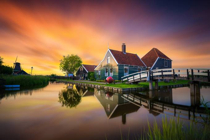 Typical Dutch! by albertdros - Image of the Year Photo Contest by Snapfish