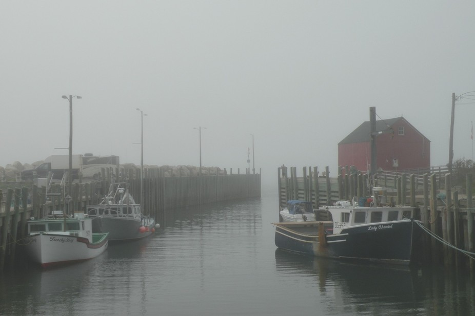 Rising tide with incoming fog at Hall\'s Harbour along the Bay of Fundy, Nova Scotia. Photo taken ...