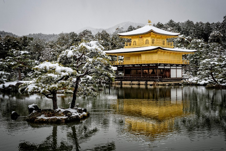 Kinkakuji, the Golden Pavilion, under snow.  Kyoto, Japan