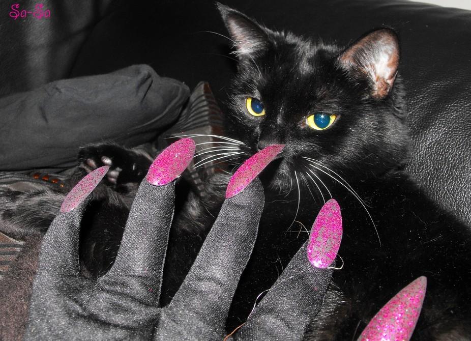 Halloween in her eyes