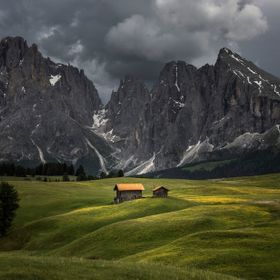 Alpi di Siusi (Seiser Alm) is Europes highest mountain plateau and provides spectacular views of Sassolungo. Here there was some superb light bee...