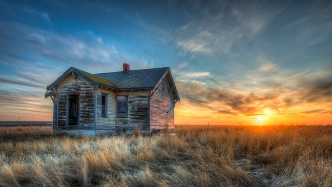 The Worth of Gold by Wayne-Stadler-Photography - Dry Fields Photo Contest